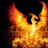 Phoenix_I_Rise