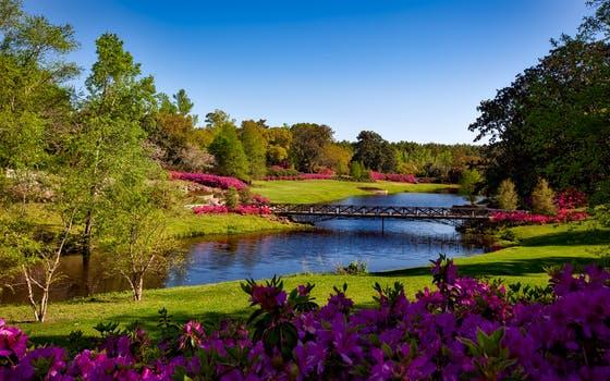 bellingrath-gardens-alabama-landscape-scenic-158063.jpeg