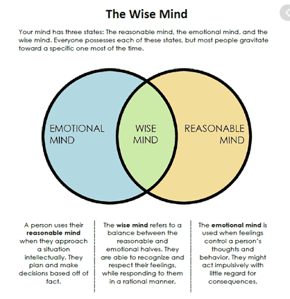 WISE MIND.png